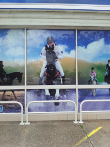 digital-print_outdoor_window_sign_advertising_hoarding-10
