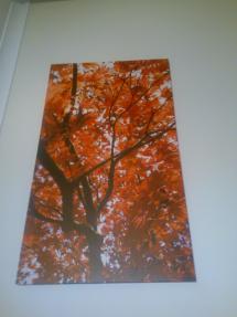 wall-graphic_canvas_digital_print_-16